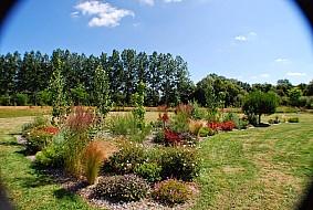 Jardin paysage